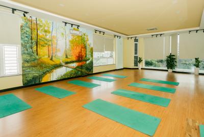 Yoga Q9